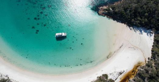 塔斯马尼亚 酒杯湾中文一日游(霍巴特往返 全球最美海滩+极鲜生蚝+科尔斯湾+蜜月湾+海滨小镇+菲欣纳公园)