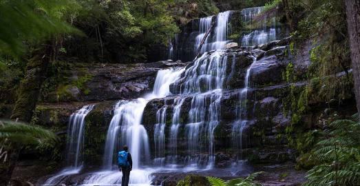 塔斯马尼亚 霍巴特 费尔德山+皇家植物园 中文一日游 溯溪观瀑