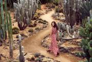 墨尔本周边小众网红景点 仙人掌王国 INS风拍照打卡圣地 火爆抖音小红书 Cactus Country